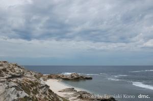海 ロットネスト島