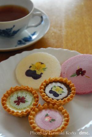 お菓子「世界にひとつだけの花」