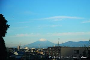 朝日 冠雪の富士