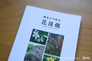 鎌倉広町緑地 花図鑑